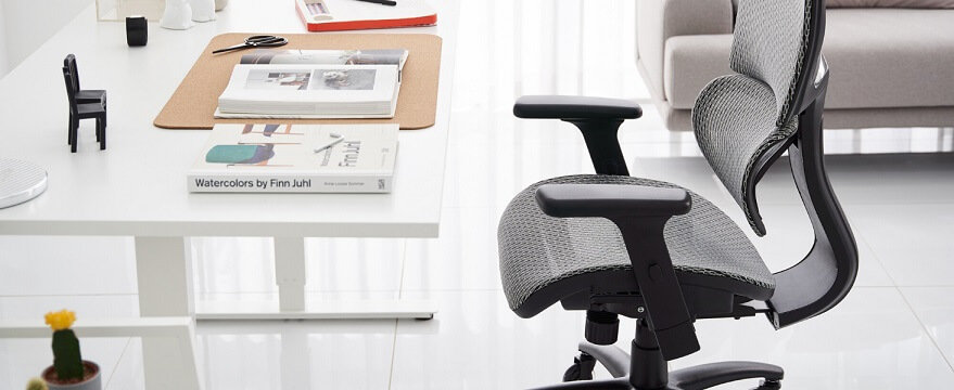 chair scoliosis nouhaus ergonomic chairs desk lumbar support wheels mesh computer officesolutionpro armrest swivel rolling executive blade adjustable gaming extra